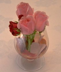 Pink roses upstage red rose.
