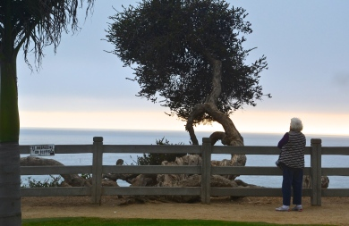 Elderly lady looks contemplatively at the horizon while the sun sets on the Pacific. Santa Monica, CA