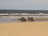 Mounted police on a beach in Brazil