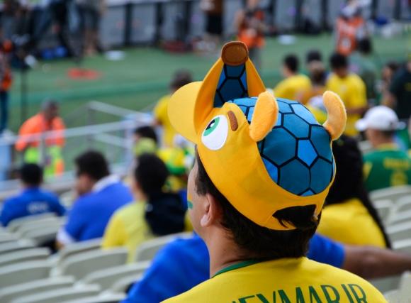 Soccer fan. Brazil.