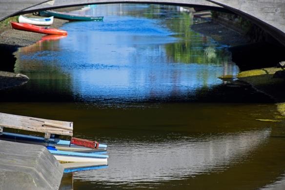 CanalWeb4_DSC0101