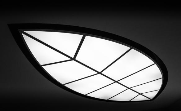 Architectural2-DSC_9325