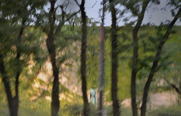 Monet-DSC_8125