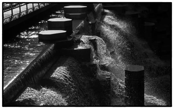 Water-Web-B&W-DSC_9274