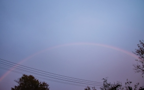 RainbowWeb-DSC_0405