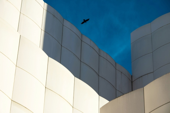 AbstractLACMA-DSC_2022