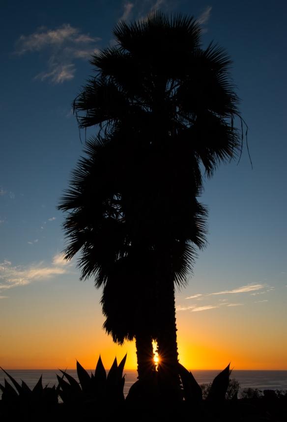 SunsetWeb-DSC_0582