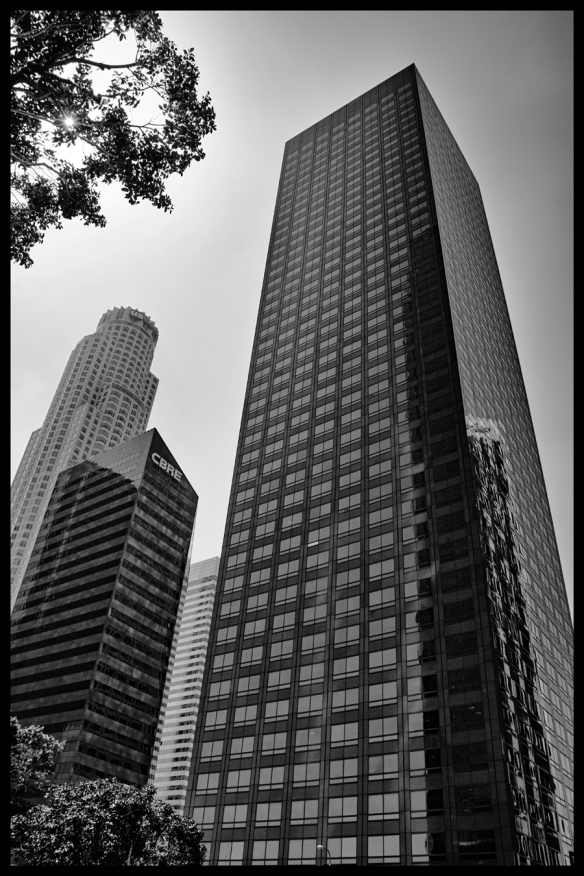 Building-BW-Web_DSC0745