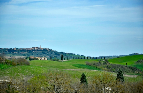 TuscanyWeb_DSC0165