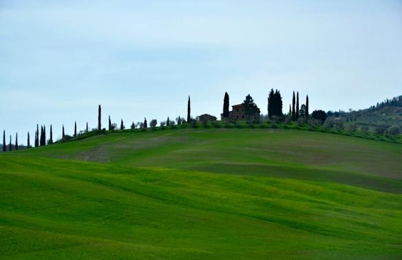 TuscanyWeb_DSC0180