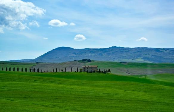 TuscanyWeb_DSC0184