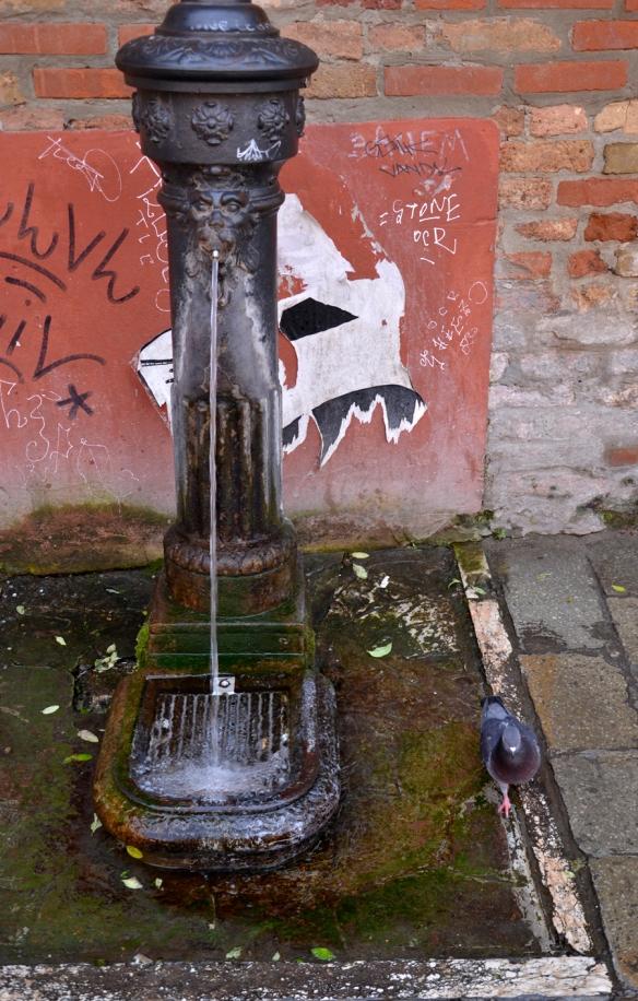 Fountain_Web-DSC0143-1