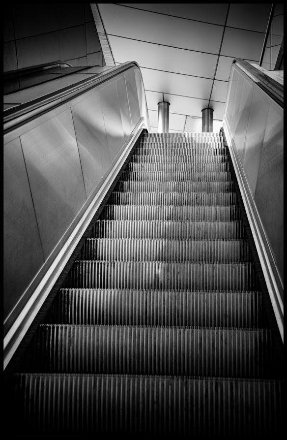 Steps-B&W-Web-DSC_6137