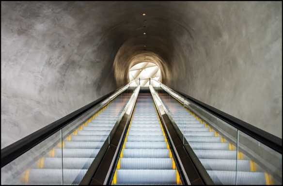 escalatorweb-dsc_7386