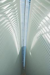 oculus-webdsc_0922