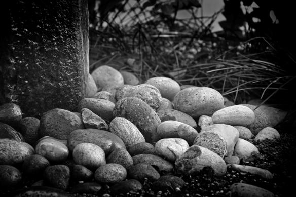 rocks-web-dsc_0469