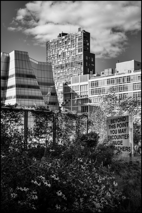 signs-bw-web-dsc_0572