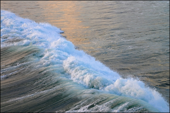 water-web-dsc_3975