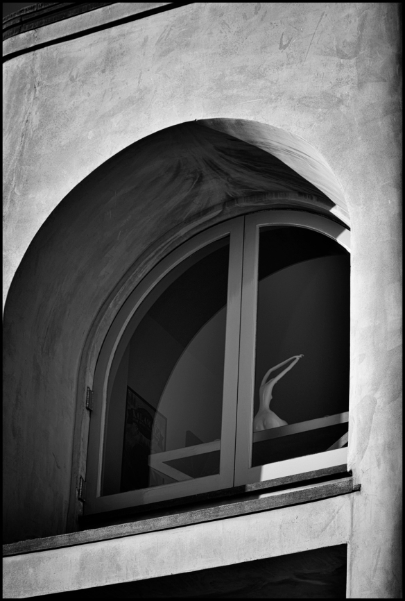 window-bw-web_dsc0850
