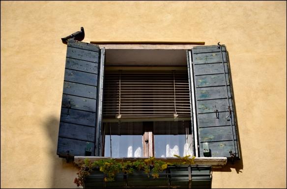 windows-web_dsc0024