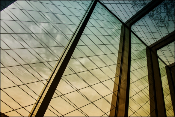 architectural-web-dsc_6470