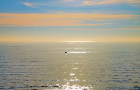 sail-web-dsc_8206