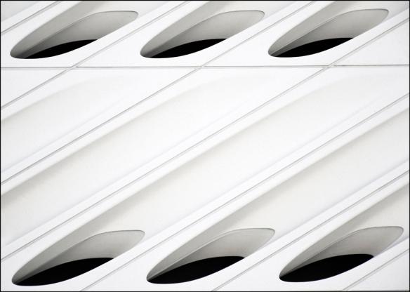 white-web_dsc0700