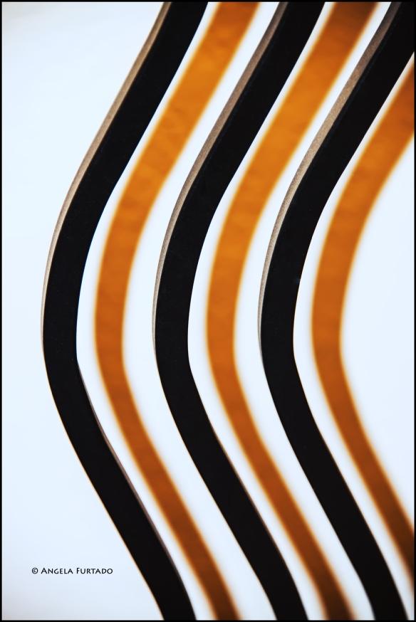 curves-web-dsc_8753
