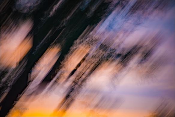 windfire-web-dsc_8740