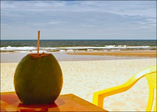 Coconut water and an empty beach in Brazil.