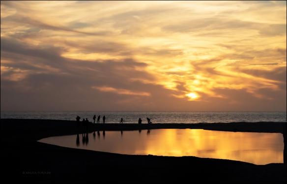 sunsetweb-dsc_9466