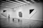 MOMA-WEb-DSC_4195