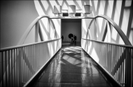 MOMA-Web-DSC_4259