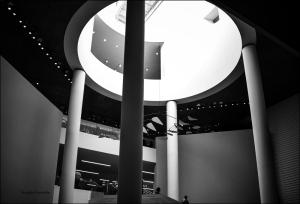 MOMA-Web-DSC_4337