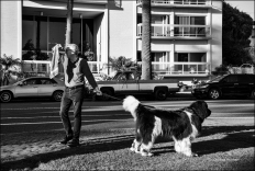 Man and giant dog at Palisades Park, Santa Monica.