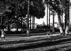 Children playing at Palisades Park, Santa Monica.