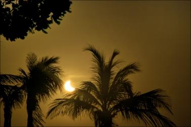 Eclipse-Web-DSC_0599