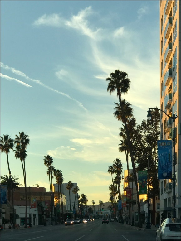 The sun was beginning to set as we drove down Wilshire Boulevard.