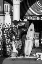 Surfer Shark.