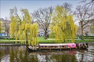 AmsterdamWeb-DSC_3538