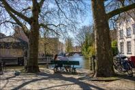 Bruggeweb-DSC_4237