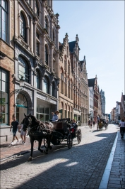 BruggeWeb-DSC_4287