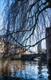 BruggeWeb-DSC_4386
