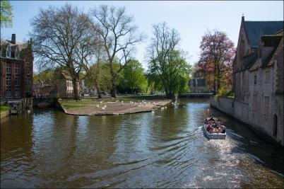 BruggeWeb-DSC_4546