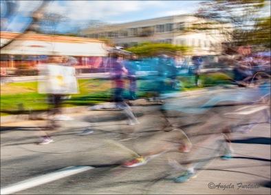 MarathonWeb-DSC_4421